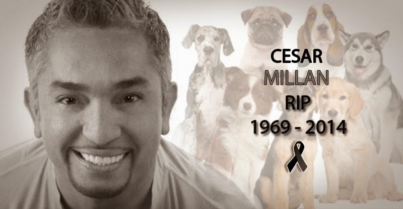 Dog Whisperer Caesar Milan Dead